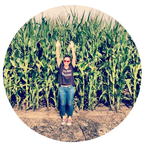lj corn