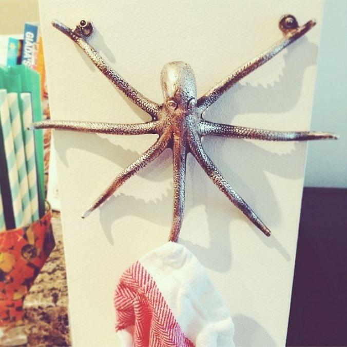 kitchen octopus