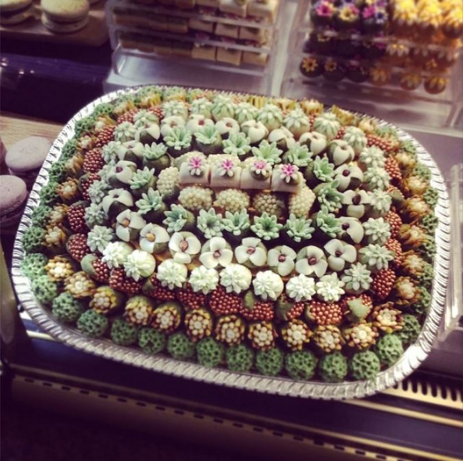 succulent candies at harrods